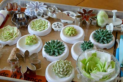 Edible Gumpaste Succulents - Drying
