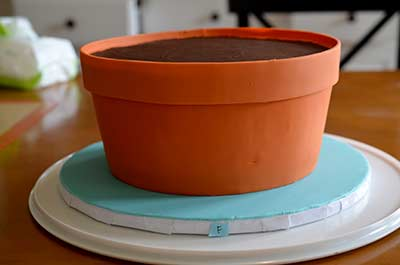 Terracotta Pot Cake